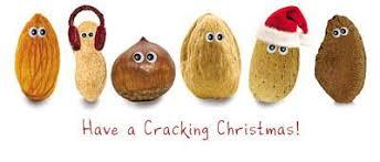 christmas nuts mojo health newcastle