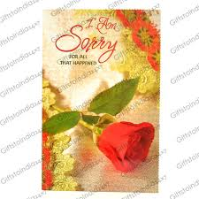 send single sorry greeting card to india send rakhi to