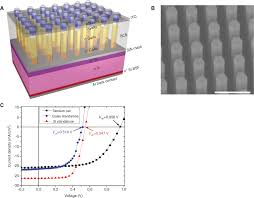 integration of low dimensional materials for energy harvesting