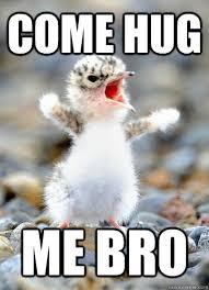 Give Me A Hug Meme - come hug me bro hug me quickmeme