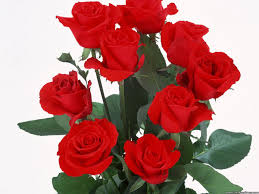 Flowers Com Desktop Wallpapers Flowers Backgrounds 9 Red Roses Www