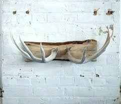 deer antler home decor deer antler decorating ideas antlers decor modern decorations deer