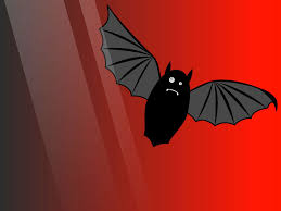 bat computer background bat pictures bat scary animal photo gallery