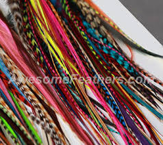 feathers for hair salon quality feather hair extensions awesome feathers