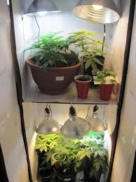 closets grow room