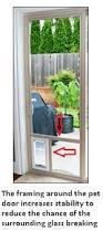doggie door in glass door pet doors for glass doors dog doors and cat doors