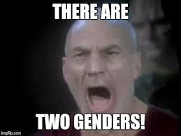 four lights picard four lights memes imgflip