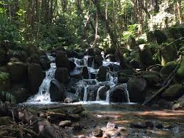 Craigslist Rentals Kauai by More Waterfall Adventures U2026 U2013 Life U0027s Next Adventures