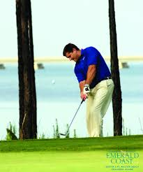 bichon frise golf head cover destin u2026 hashtag on twitter
