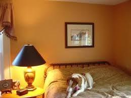 105 best orange u003epumpkin u003epeach wall color images on pinterest