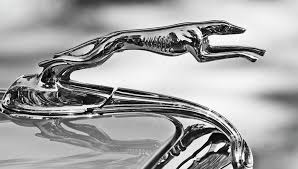 ford and lincoln greyhound robb report