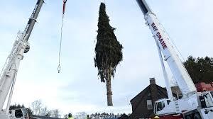 is the rockefeller center christmas tree lighting ceremony