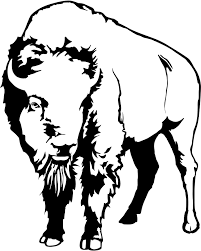 Bison Connect Department Of Interior Coloring Book Yellowstone National Park U S National Park Service