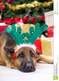 deer antler christmas tree christmas lights decoration