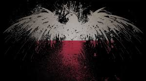 Eagles Flag Eagles Flags Polish Poland Artwork White Eagle Wallpaper