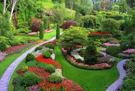 Backyard For Dogs Landscaping Ideas Oman Landscape Backyard Landscaping Ideas When You Have Dogs