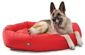 Cats In Dog Beds Ethical Dog Beds Handmade In The Usa By West Paw