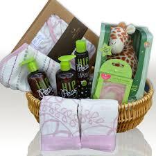 Baby Basket Gifts Baby Gift Basket Phoenix Gift Baskets Gift Baskets Phoenix