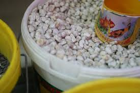 how to prepare fish tank gravel 10 steps with pictures