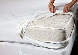 Bed Bugs In Sofa by Bed Bug Covers Bed Bath And Beyond Best Mattress Decoration