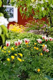 906 best puutarha keväisiä puutarhoja images on pinterest