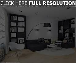 black and white chairs living room home design ideas modern with