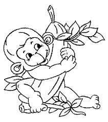 8 images monkey printable coloring pages curious