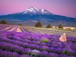 Nevada Natural Attractions images 10 amazing natural places to visit in california jpg