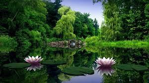 hd wallpaper nature download free stunning high resolution