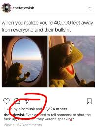 Kermit The Frog Meme - elon musk gets called out after liking a kermit the frog meme