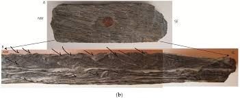 geosciences free full text calcite twinning in the ordovician