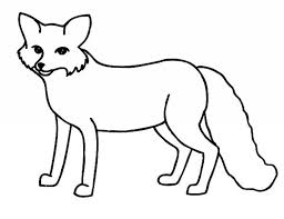 arctic fox coloring page free artic fox coloring page for kids