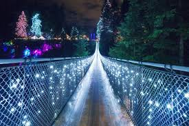 6 places to see the lights in vancouver