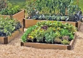 Raised Gardens Ideas Small Raised Garden Bed Plans Great Best Easy Diy Raised Garden