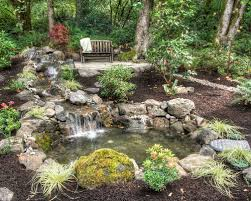 Pictures Of Backyard Ponds by Outdoor Ponds And Waterfalls Houzz