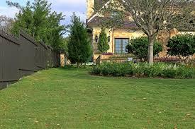 geo zoyisa grass sod solutions