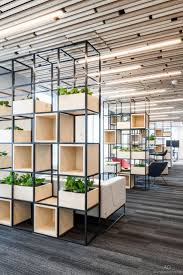 office partitions ideas living plants plant containers office