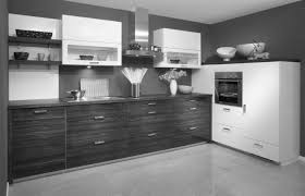 cabinet stunning grey gloss kitchen ideas with black appliances