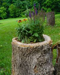 Pictures Of Tree Stump Decorating Ideas Interesting Ideas How To Decorate Your Garden With Tree Stumps