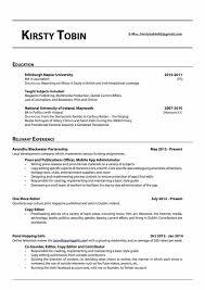 Landlord Reference Letter Ireland 100 Resume Format Uae Cv Uae 100 Fmea Template Excel Free