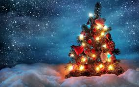 kerst 2016 bij welling kijk naar ons uitgebreide assortiment