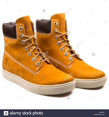 timberland 2 0 cupsole 6 inch wheat mens boots 6667r stock photo