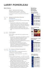 International Business Resume Sample by Purchasing Resume Samples Visualcv Resume Samples Database