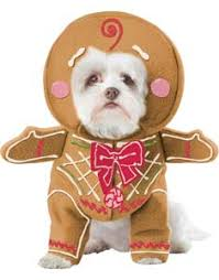 pet christmas buy dog costumes and puppy costumes at guaranteed low
