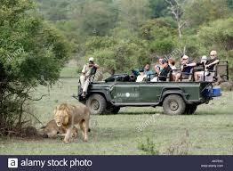hatari jeep kruger national park safari jeep stock photos u0026 kruger national