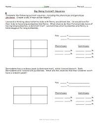 punnett square worksheet human characteristics 22 best genetics