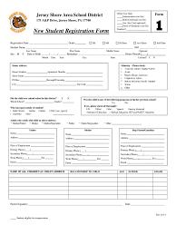 Registration Form Template Excel 9 Application Form Template Word Ledger Paper 1231 Lotcos