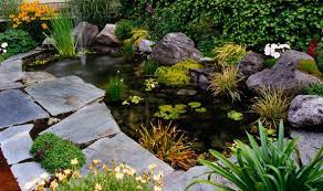 how to care for ornamental ponds autumn and winter garden