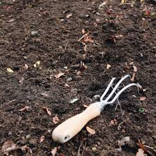 how to start a garden the ultimate guide for new gardeners