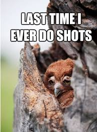 Hungover Meme - last time i ever do shots hangover owl quickmeme